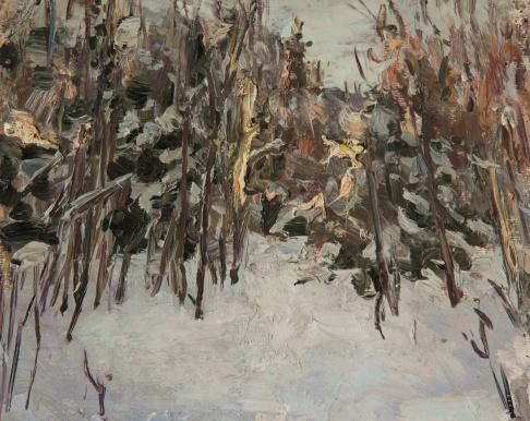 Лес на закате