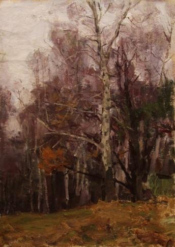 Осенние берёзы