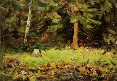 Летом в лесу