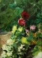 Цветы из Никитского Ботанического сада