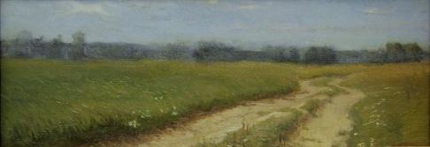 Дорожка в поле