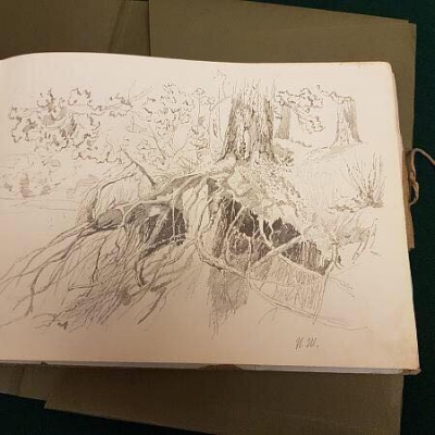 Альбом с рисунками Ольги Лагоды-Шишкиной