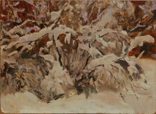 Н.П. Толкунов  «Куст в снегу»  к.м.  43.5х60 см. 1950-е гг.