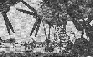 В.Н. Лемешев «Под крылом» Из серии «Мирные крылья» Офорт. 1963 г.